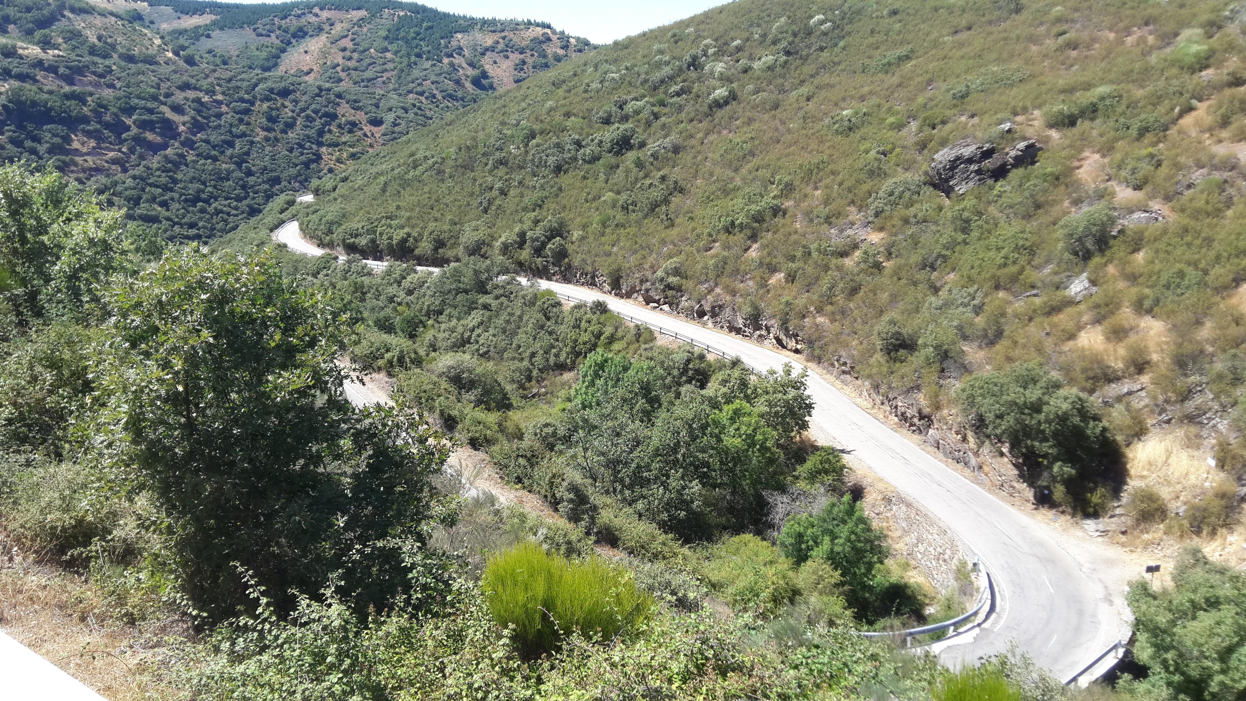 Molinaseca felé