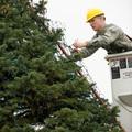 Milyen szerszámokra lesz szükségünk a karácsonyfa állításhoz