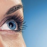 A szem védelmezői