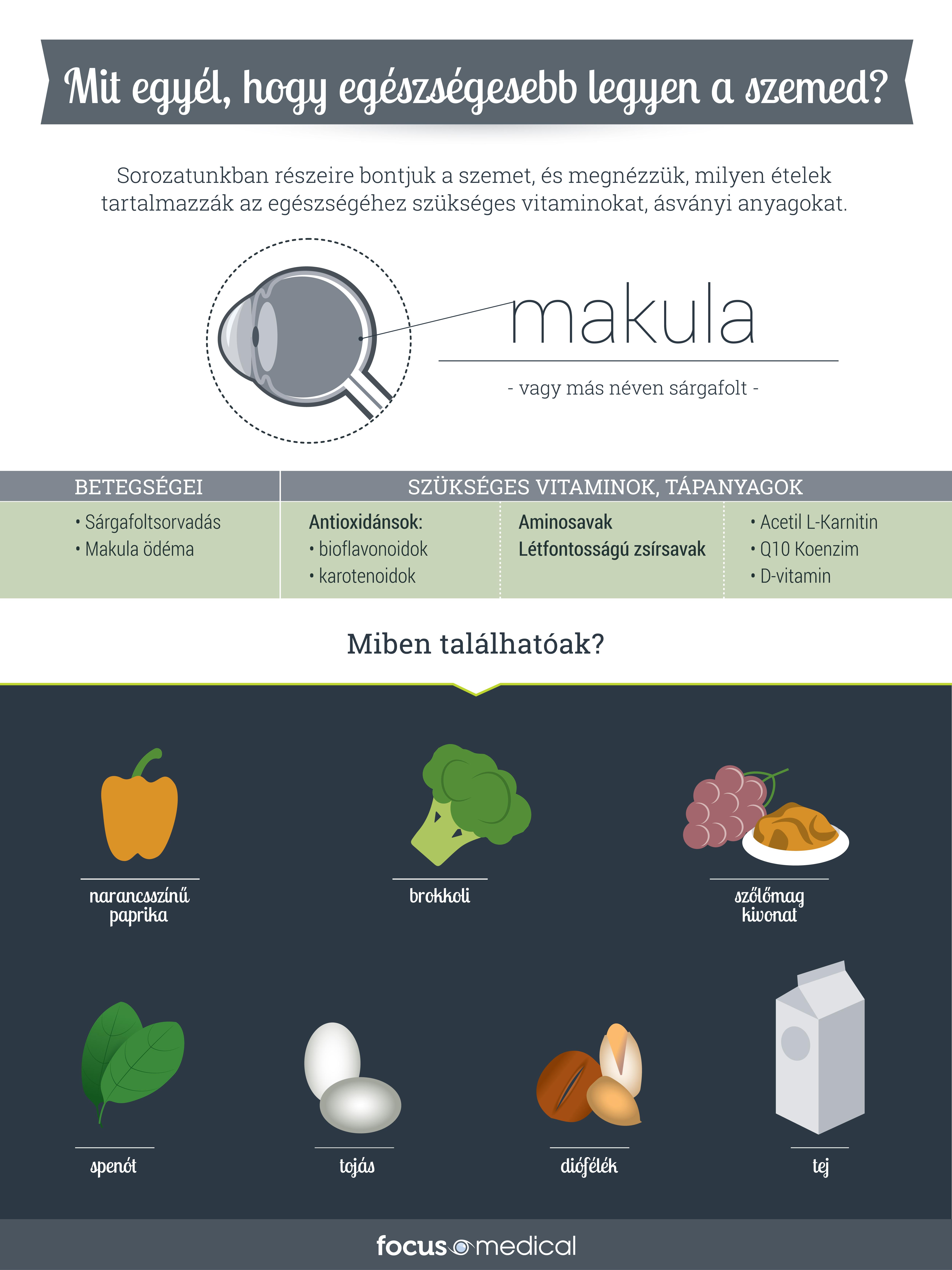 fm_infografika_makula_v1.jpg