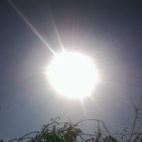 Őszi napsugár