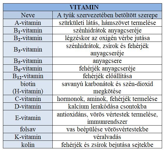 vitaminok_szerepe_2.png