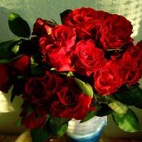Hogyan tartsuk frissen a rózsacsokrot?