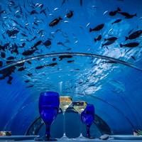 Jön a világ legnagyobb víz alatti étterme