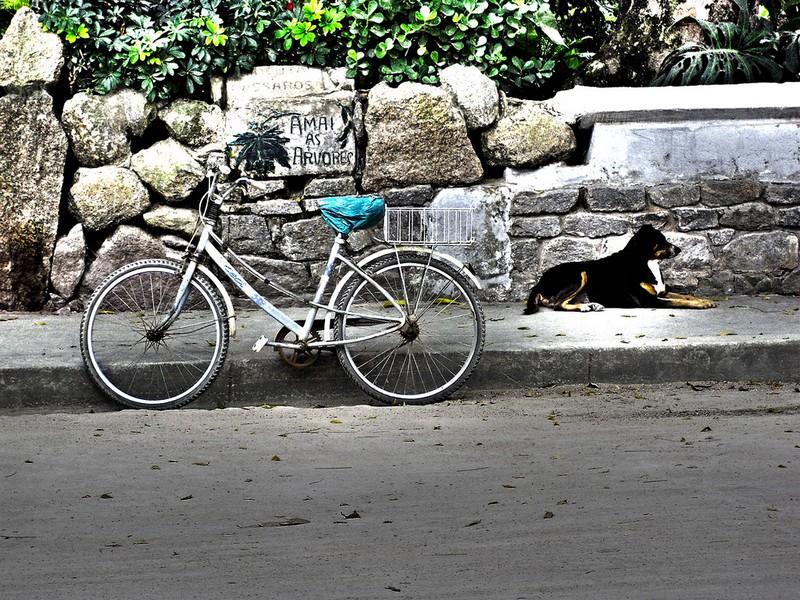 paqueta_foto_flickr_com_rogerio_zgiet.jpg
