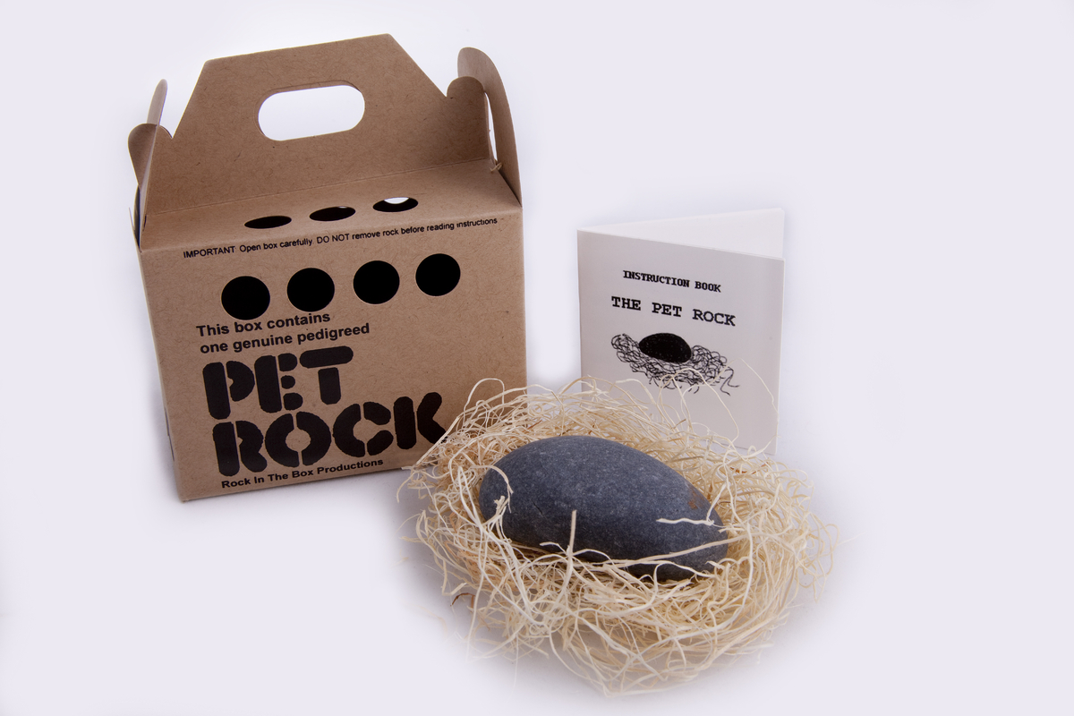 the_pet_rock.jpg