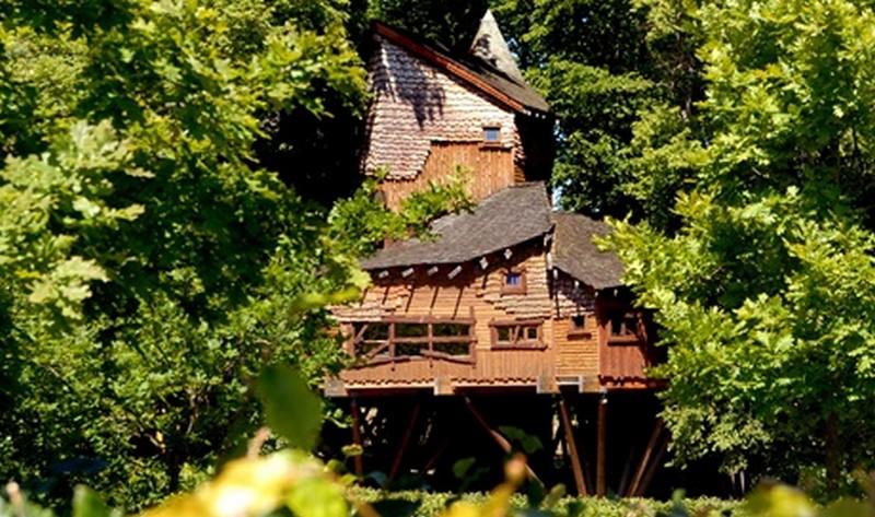 treehouse_1.jpg