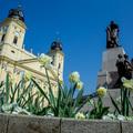Debrecen nem csak a karnevál miatt virágzik