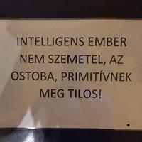 Intelligens ember nem szemetel, az ostoba, primitívnek meg tilos!