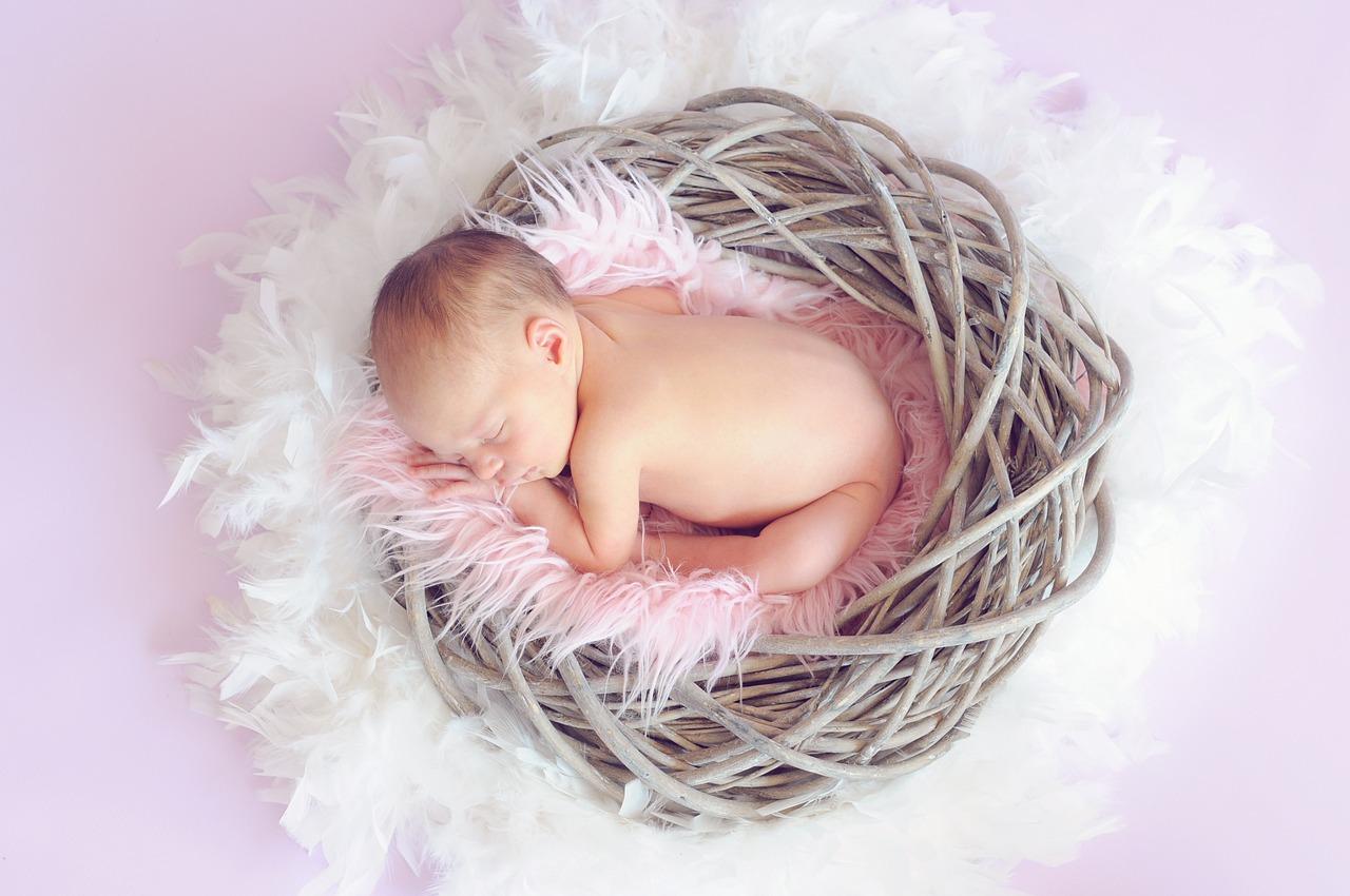 baby-784608_1280.jpg