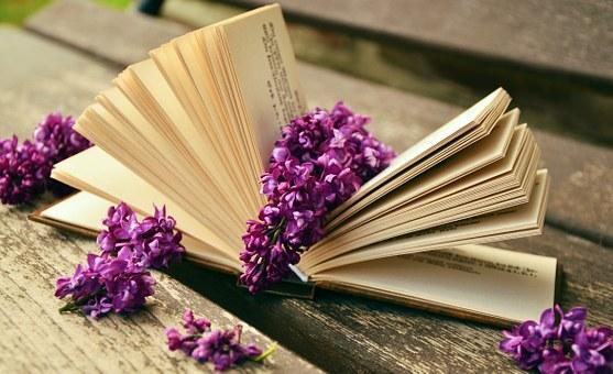 book-759873_340.jpg