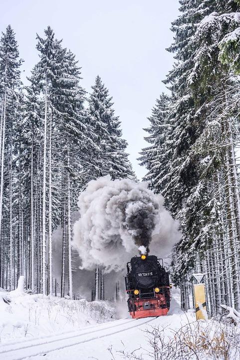 harzer-schmalspuhrbahn-3024504_960_720.jpg