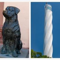 Mi a közös a rottweiler kutyában és Németország legmagasabb kilátójában?