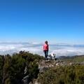 Madeira arra tanít, amire éppen szükségünk van