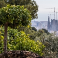 Ezt üzeni öt európai nagyváros 2019-re