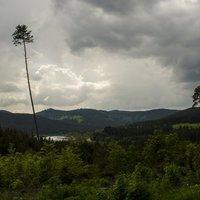 Miért fekete a Fekete-erdő?