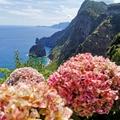Madeira és a járvány
