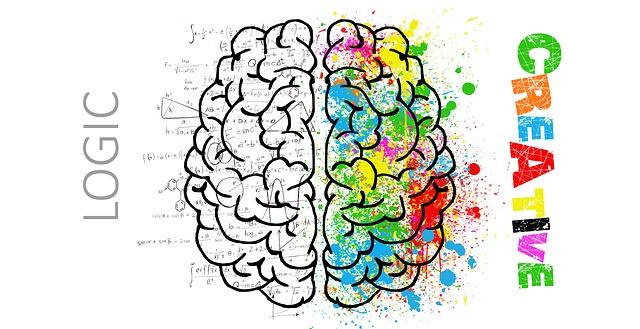 brain-2062055_640.jpg