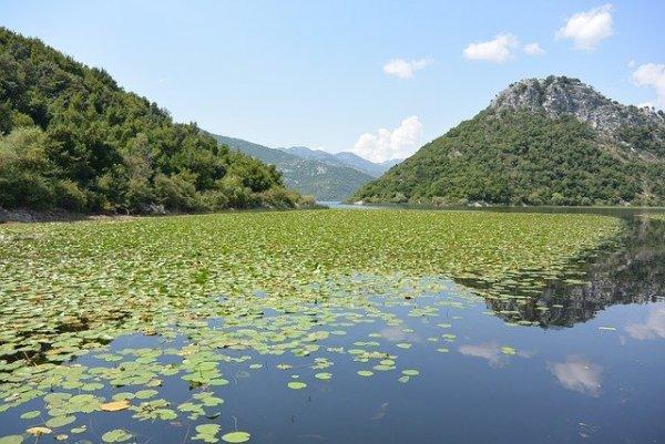 skadar-lake-469973_640