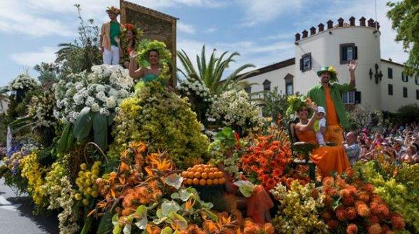 Virág Madeira