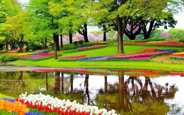 garden-1093681_640