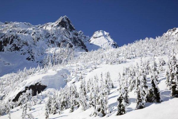 us_skigebiet_mount_baker_mehr_schnee_als_hier_geht_nicht_jedes_jahr_liegen_im_schnitt_16_5_meter_schnee_1_600x400.jpg