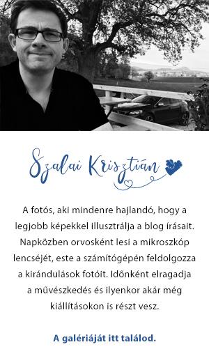 szalai_krisztian_nevjegy.jpg
