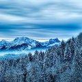Az igazi Hófehérke: a hideg tél (tél-nyár) színtípus