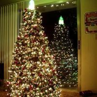 Karácsonyfa és tükör