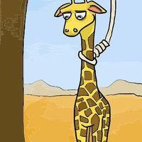 öngyilkos zsiráf