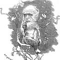 Evolúció vs. intelligens tervezettség