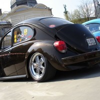 Peter's bug parting out