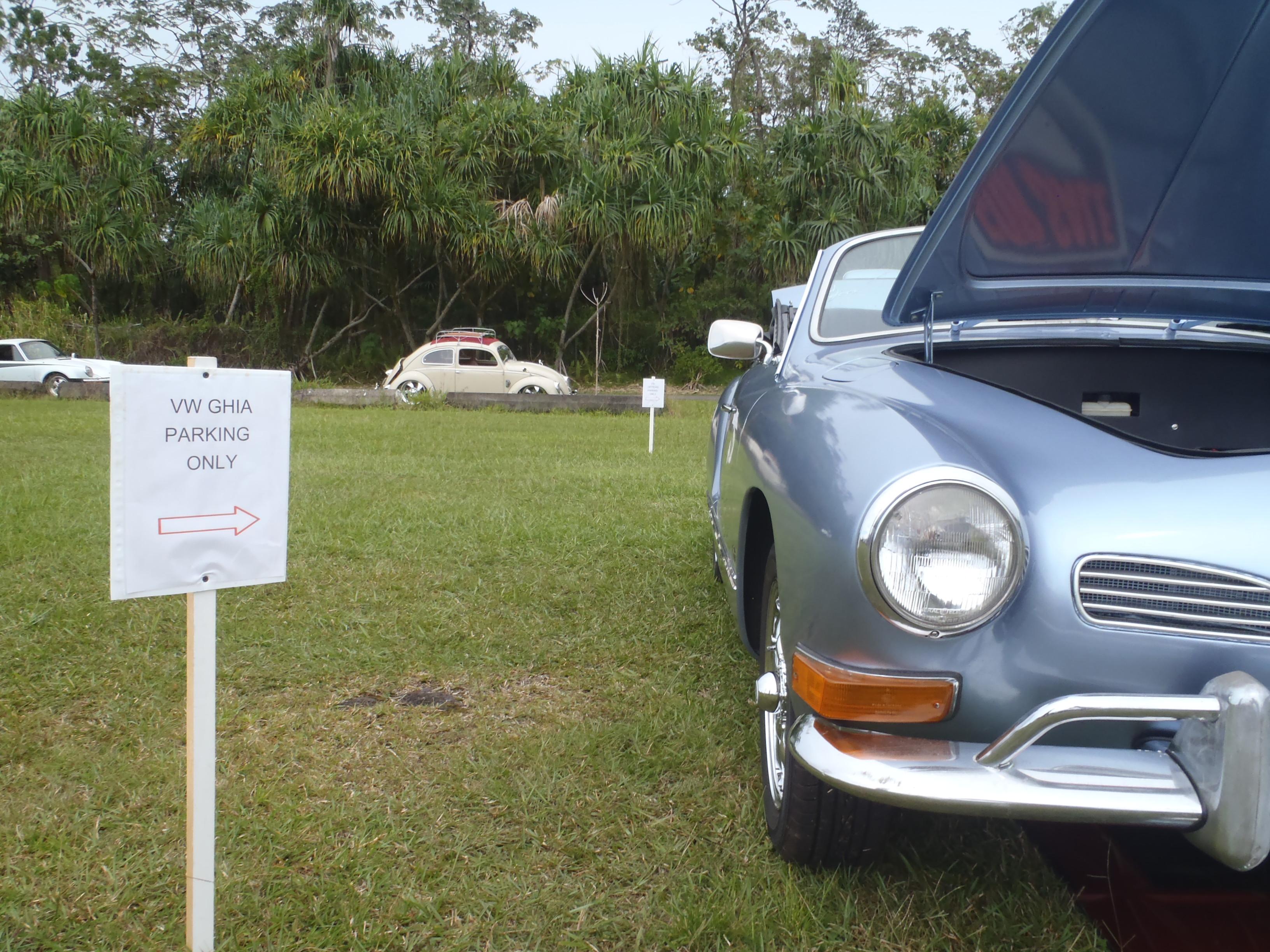VW Bug-In 003.JPG
