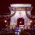 #chainbridge #architecture #hystory #sculptures #hungary #europe #photoblogger #travelblogger #travelwithme #lights #nightlights #nightlife #szilviaschafferphotography #carpediem
