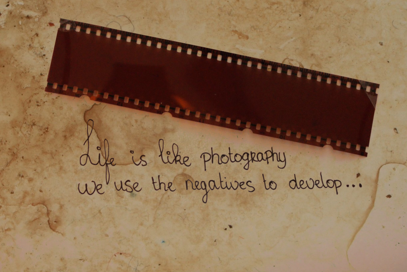 photography_quote_by_skeletonhorror.png