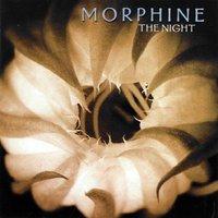 Egy munka-morfinista muzsikus élete, alternatívái és halála - Morphine: The Night (2000)