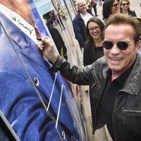 Arnold Schwarzenegger, a bécsi villamos és a mocsári teknős