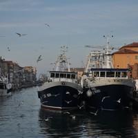 Chioggia és utazás tovább délre