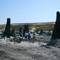 10 éve találták meg a bükkábrányi 7 millió éves mocsárciprusokat