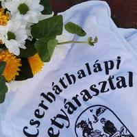 Eljött a nagy nap! Testvértelepülési találkozó Cserháthalápon
