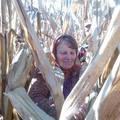 Halápi kukoricázó