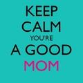 Minősített társadalom - Te hány csillagos anya vagy?