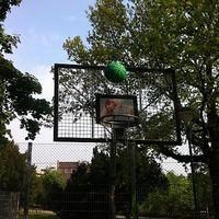 Mától kosárlabda