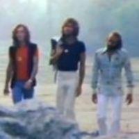 December 13. - Dúdolj Bee Geest újraélesztés közben