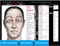 Anatómia: Források forrása