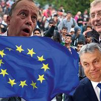 NE-Eurológia: miért ne szavazz a nincs is kire