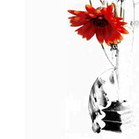 Virágot a halottnak