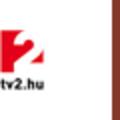 A TV2-höz igazol Gönczi Gábor és Szebeni István