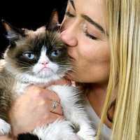 A macskák és gazdijuk közötti kommunikációt vizsgálták magyar kutatók