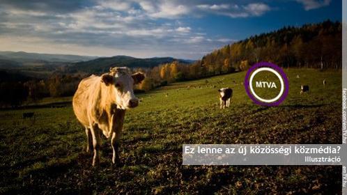 mtva_logo_a_mezon.jpg